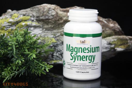 Magnesium Synergy 120 Stk.